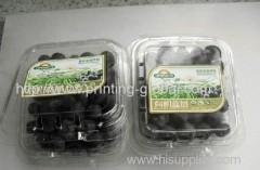 Heat transfer film for fruit packing box
