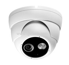 Sony Effio 700TVL CCD CCTV Vandal Proof Dome Camera