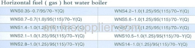 Horizontal Fuel and Gas Boiler