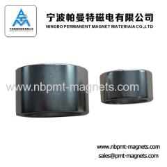 multipole magnet for motor