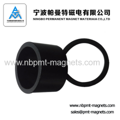 Permanent rare earth ndfeb ring multipole magnet