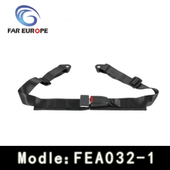 2 Points racing harness