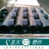 Carbon steel pipe tee (reducing tee,equal tee)