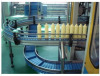 Conveyor system for food , beverage , chemical products