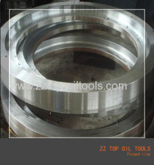 ASTM AISI Titanium Forged Ring
