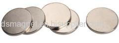 Disk Rare Earth Magnet Motor