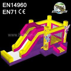 Jumping House And Slide For Sale