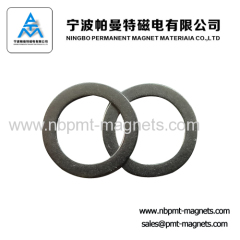 Sintered Neodymium Ring NdFeB Magnet with Ni-Cu-Ni Coating