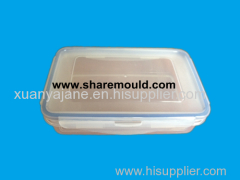 injection plastic box mould