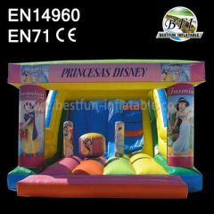 Princess Inflatable Dry Slide