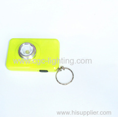 dry battery plastic keychain LED flashlight