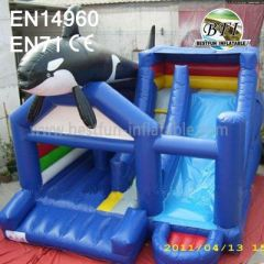 Inflatable Outdoor Toys Combo