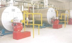 Water tube WNS Series Fuel and Gas Boilers