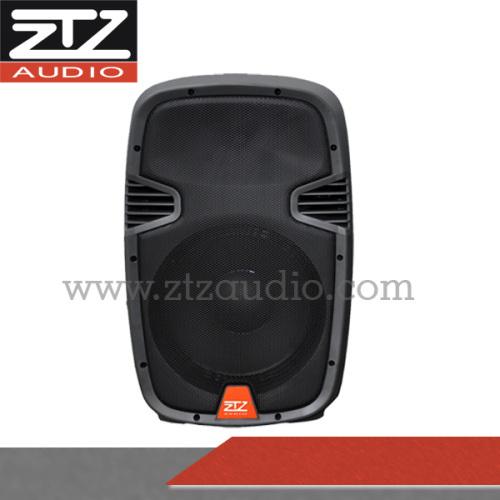 Professional active speaker box TN1201