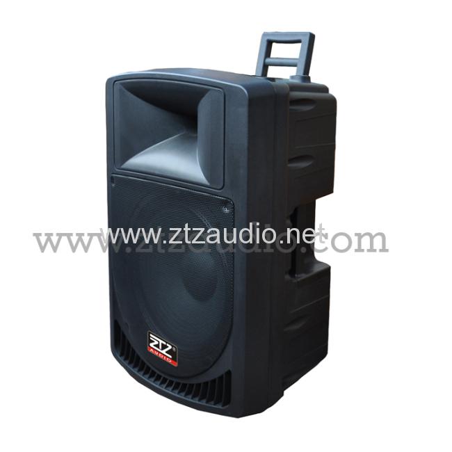 Professional active & passive speaker box TN1503 series