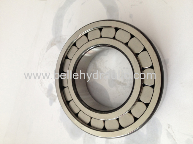 China made A11VO40 hydraulic pump bearing