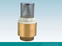 Brass foot valve with stainless steel filter