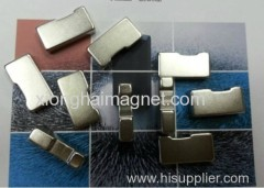Supply Irregular Permanent Magnets