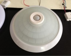 motion sensor ceiling lamp