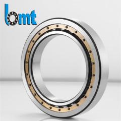 Extra large size bearing