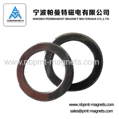 Strong Force Rare Earth Neodymium Ring Magnet