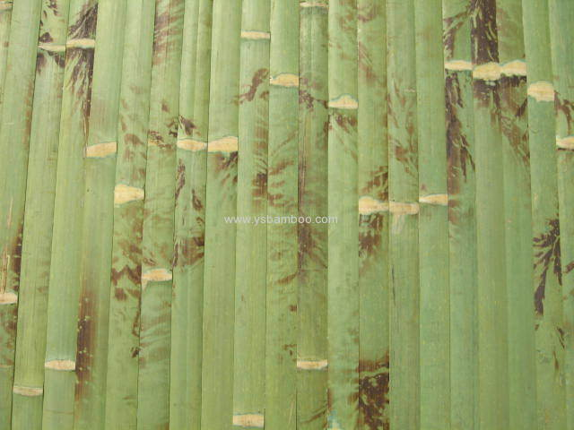 Anji Bamboo Pattern Wallpapers