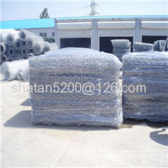 Hexagonal Wire Mesh /hexagonal wire netting for fish/chicken
