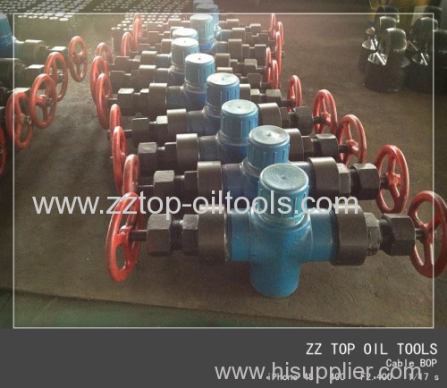 Wellhead polish rod BOP 3000 psi