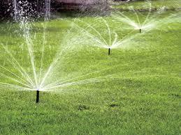 Garden Lawn Water Sprinkler Clear