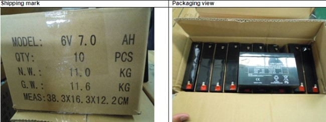 Pre Shipment Inspection for Chargeable Battery