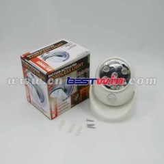 Battery Powered Led Lighting/Wall Porch Light/Light Angel LED Floodlight