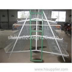 chicken farm /chicken cage/chicken coop for sale