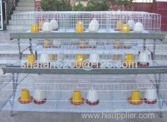 hot sale A type chicken cage for chicken farm
