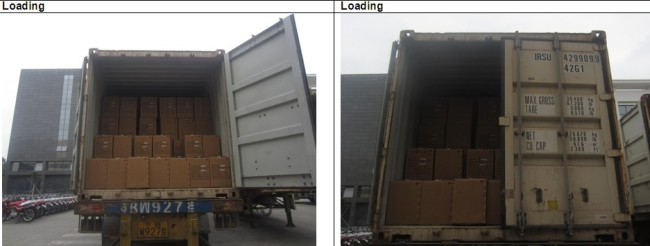 Professional Container Loading Inspection Services