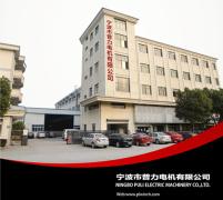Ningbo PuLi Electric Machinery Co., Ltd.