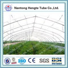 single tunnel metallic sunlight greenhouse