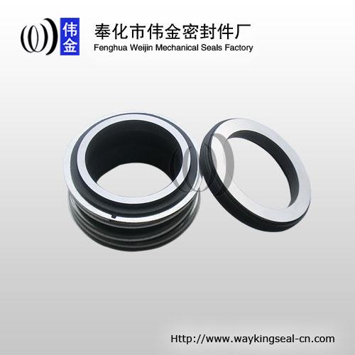 industrial pump MG1 mechanical seal burgmann TC / TC