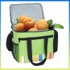 Fashion stylish green ice bag water-proof travel cooler bag