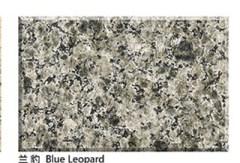 High Polished Blue Leopard Granite