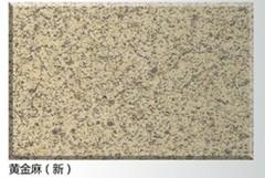Gold Ma Granite Slab for Flooring