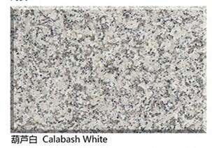 Polished Calabash White Granite Slab