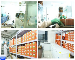 F lurbiprofen CAS:5104-49-4 china pharmaceutical supplier