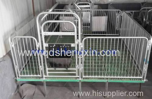 Pig Single Farrowing Crates