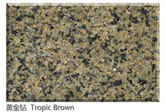 Tropical Brown granite tile suppliers