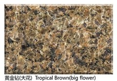 Natural Polished Granite Tropical Brown Slab big flower