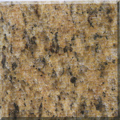 Giallo Veneziano Granite Slab