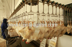 Poultry Processing Equipment Live Birds Reception Area