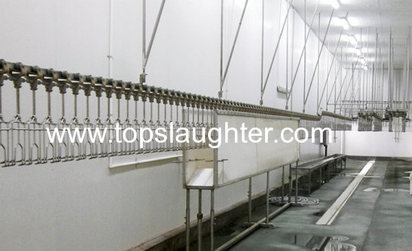 Food Processing Industry Chicken Abattoir Equipment from