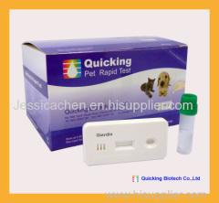 Giardia Antigen Test Giardia Ag Test Giardia Test Pet rapid test Veterinary Rapid Test China rapid test Rapid test manuf