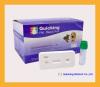 Canine Rotavirus Antigen Test|Canine Rotavirus Ag Test|Canine Rotavirus Test|Pet rapid test|Veterinary Rapid Test